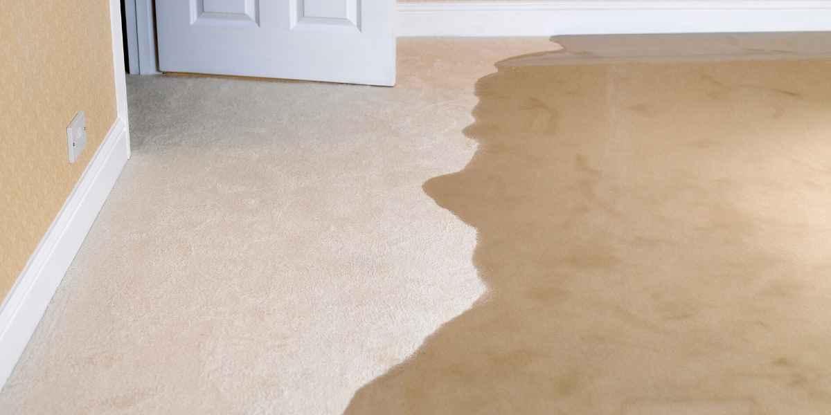הצפת שטיח עם מים