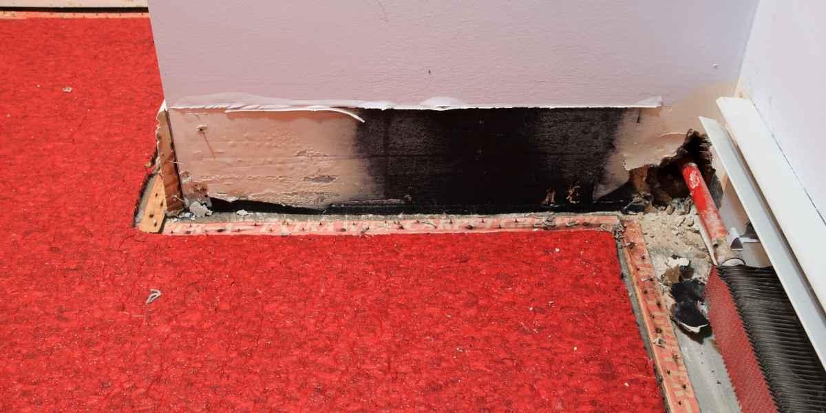 שטיח לאחר נזק בצפה