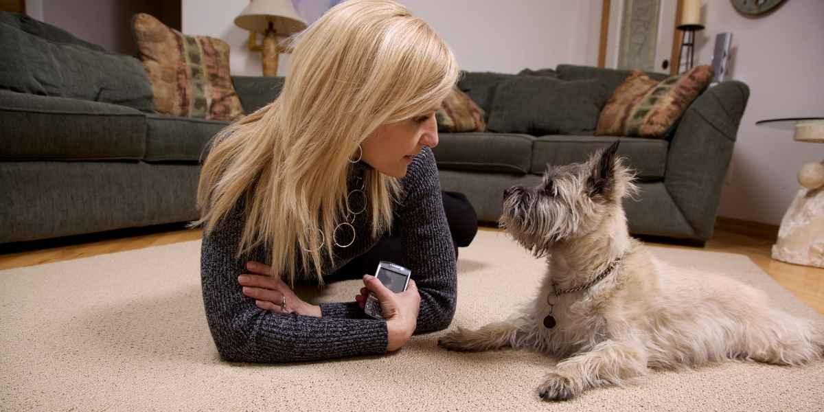 אישה וכלב על שטיח