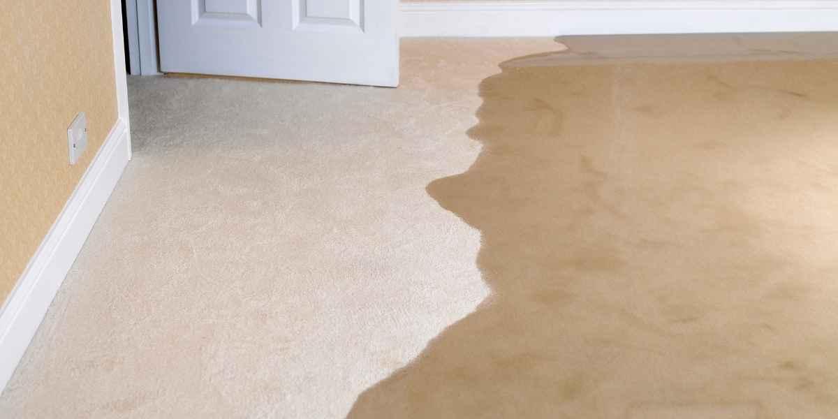 שטיח מקיר לקיר מוצף מים